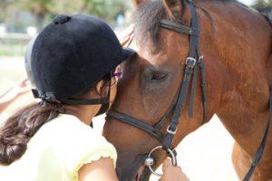 Scuola e Corsi di Equitazione Roma